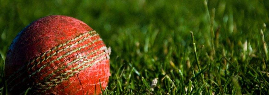 CWC Cricket Ball